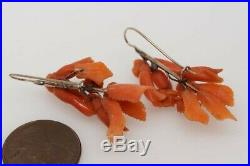 ANTIQUE GOLD & FINELY CARVED CORAL FLOWER CAMEO EARRINGS c1820