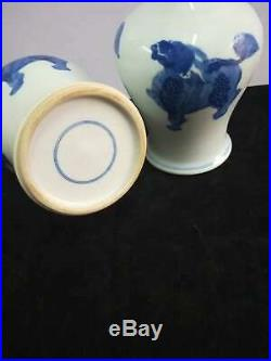 A Pair Of Fine Chinese Blue And White Porcelain Monster Hand-carving Vases Marks