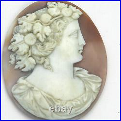 A fine & large antique carved shell classical portrait Cameo C. 19th