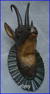 Antique Black Forest Fine Carved Wood Chamois Head