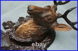 Antique Black Forest Very Fine Wood Carved Stag Deer Head