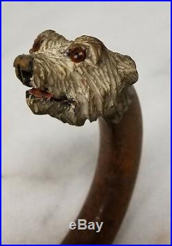 Antique FIne Carved Dog Head Cane Walking Stick Umbrella Handle Signed Maker S D