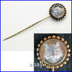 Antique Victorian Essex Crystal Stick Pin Cat Reverse Carved 14k Gold (5993)
