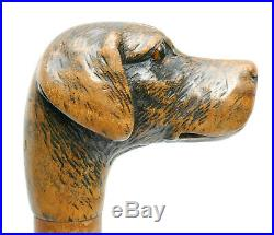 C1870, FINE ANTIQUE 19thC CARVED DOG HOUND HEAD WALKING STICK WITH GLASS EYES