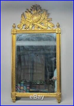 Fine 19th C. ANTIQUE ITALIAN 52 x 26 Carved Gilt Wood Mirror c. 1890