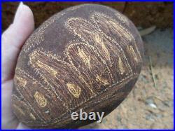 Finely Carved Aboriginal Boab Nut Art Carving Bungle Bungles Bush Turkey Snake