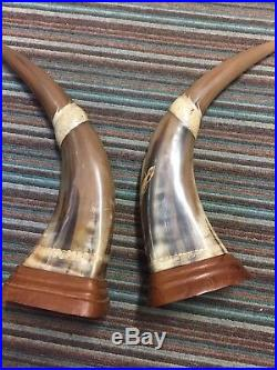 Very fine pair of hand carved water buffalo horns