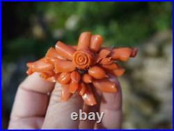 Victorian 14K Yellow Gold Carved Mediterranean Coral Rose Fruits Leaves Pin